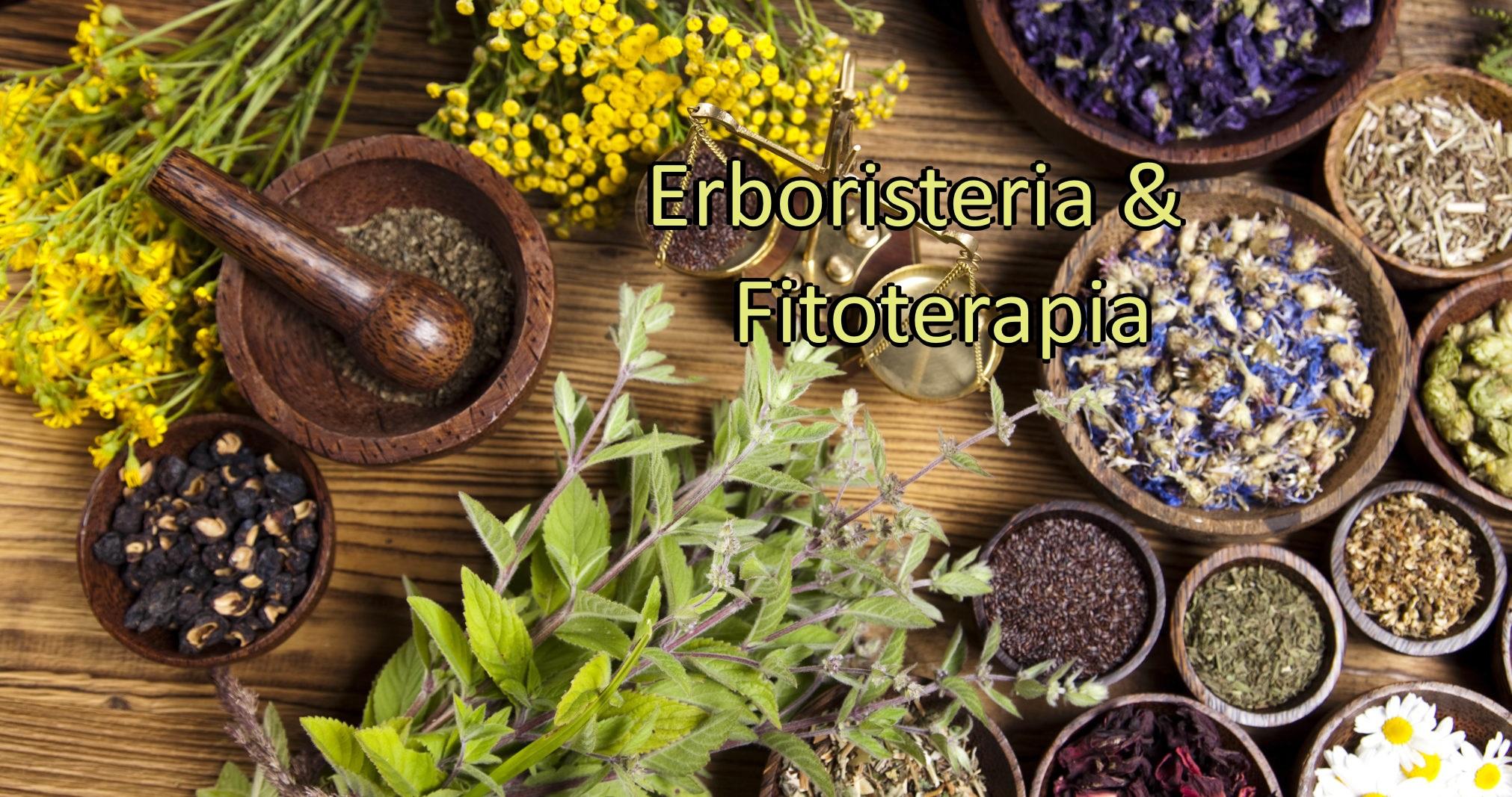 Erboristeria e fitoterapia